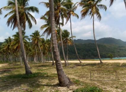 Playa del Rincon, Samana Peninsula