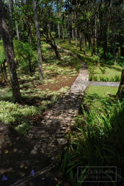 Walking path in the botanic garden at the top of Pico Isabel de Torres.