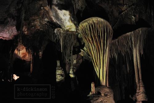 In Lehman Caves