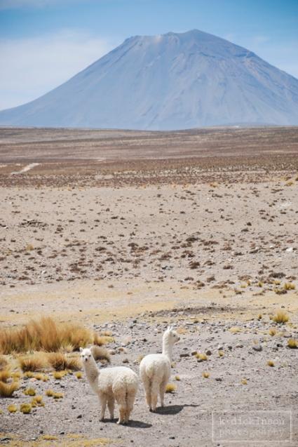 El Misti, Peru. November 2010. Nikon D80 with 18-135 lens.