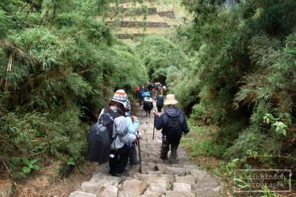 Inca Trail Day 3. November 2012. Olympus Tough 8000.