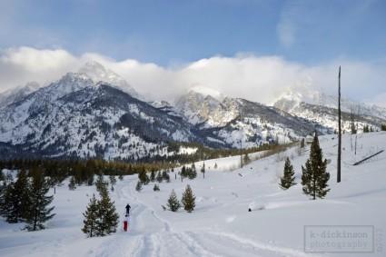 Jackson Wyoming. January 2008. Nikon D80.