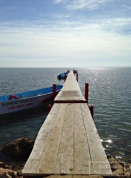 Scammon's Lagoon or Laguna Ojode Liebre