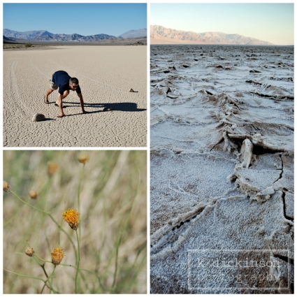 2014-03-26 Death Valley Collage 2