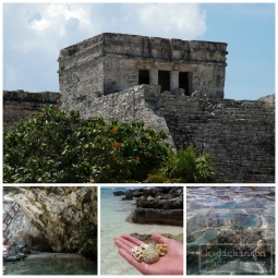 Tulum (the site), Gran Cenote, shells and coral from the Mayan Riviera, and snorkeling in the warm, clear waters.