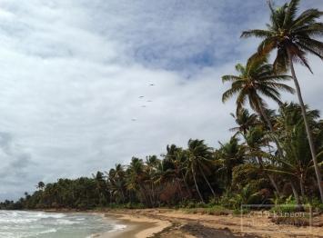 2014-04-09 Puerto Rico