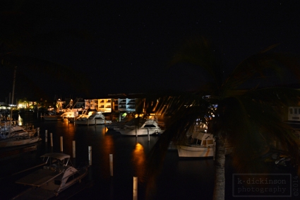 The marina at night.