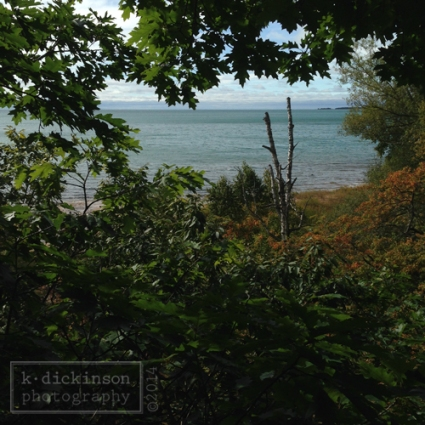 KDickinson - Michigan