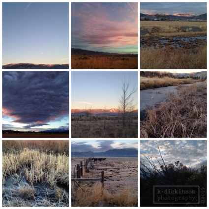 My Morning Walk Collage