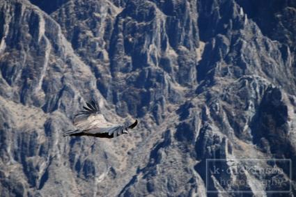 KDickinson Photography - Peru