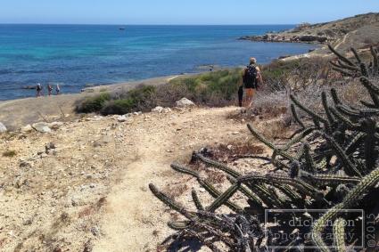 KDickinson Photography - Cabo Pulmo