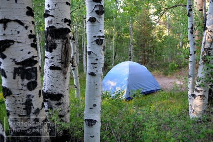 KDickinson Photography - Obsidian Campground