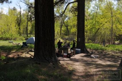 Camping near Markleeville, California