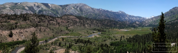 Panoramic of Leavitt Meadow from Sonora Pass