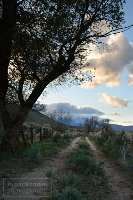 Silver Saddle Ranch, Carson City