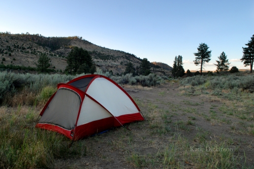 Camping at the Carson River Hot Springs
