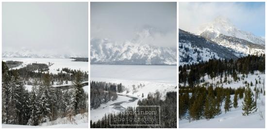 Teton Collage