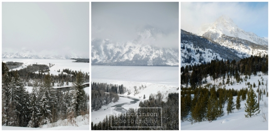 Teton Collage