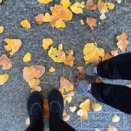 014 Morning Walk