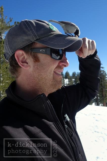 Chickadee Ridge, Lake Tahoe