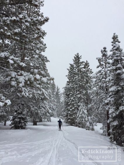 X Country Skiing at Spooner State Park, Nevada