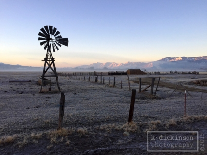 Frosty Morning in Carson City, Nevada