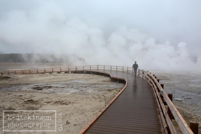 274 Yellowstone
