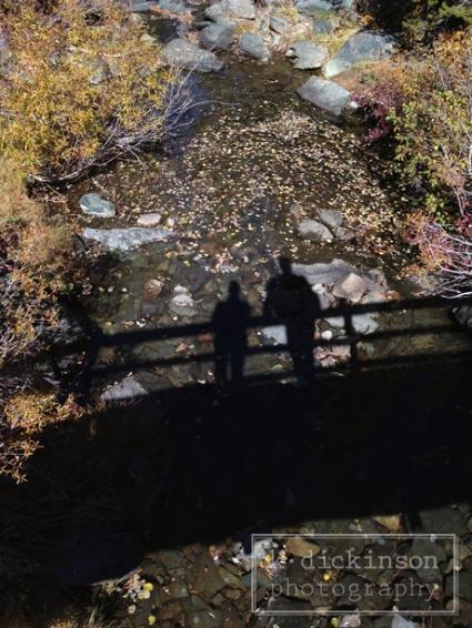 Fall in Plumas County, CA