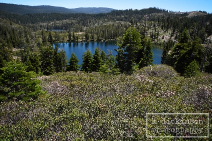 Lakes Basin, Plumas County, CA